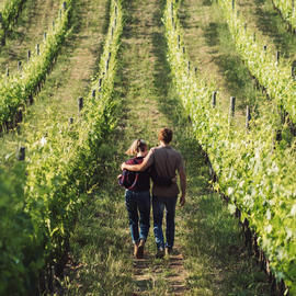 couple walking down vineyard with arms around each other's shoulders